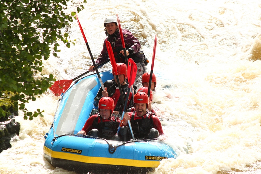 Rafting Stags