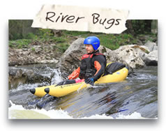 River Bugs - North Wales